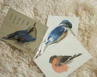 Birds.  13 postcards. In Spanish, French, English, Russian and Japanese.