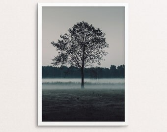 Tree print, landscape art, nature wall art, foggy, forest photo, tree wall print, printable wall art, digital, scandinavian poster, nature