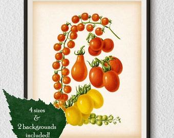 Vegetable print, Tomato print, Kitchen art print, Vegetable wall art, Antique kitchen print, Instant download, Kitchen print vintage, #38