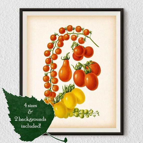 Kitchen Wall Decor Vegetables : Vegetable print tomato kitchen art