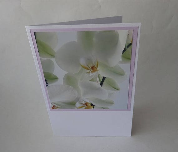 Mother's Day Card - White Orchid Flower - #1238