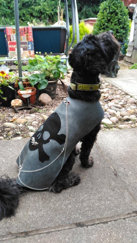 Skull and crossbones dog jacket