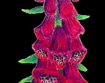 Foxglove Sticker