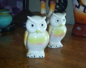 Owl Animal Totem/ Intuition Animal Totem/ Wisdom Totem Animal