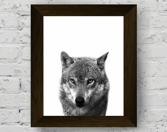 wolf wall art print, black and white animal photography, woodland animal poster, nursery decor, printable artwork, instant digital download