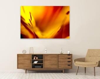 FIERY - Fine Art Photography - Wall Art - Decor - Nature - Macro - Print - Modern Fine Art - Abstract Flower - Abstract Nature