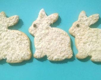 Coconut Bunny Dog Treats * Grain Free * Spring Easter Bunny