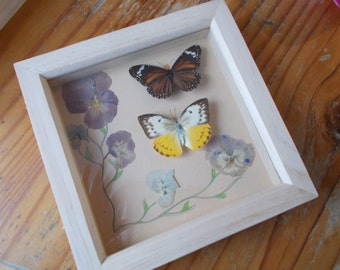 Real Butterfly and Pressed Flower Frame, Victorian style