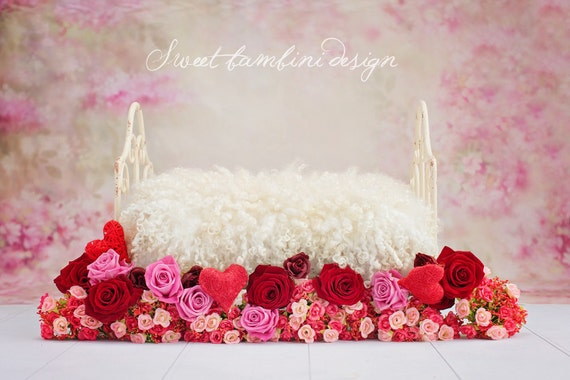 Newborn Photography Digital Backdrop Roses And Heart Valentine