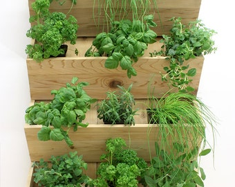 Name: The four folds (vertical garden, plant stand, plant, vertical, plant, planter, cedar wall plant, herb garden, vertical plant)