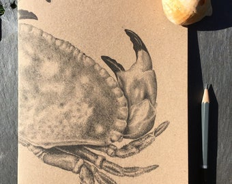 A5 kraft notebook crab pencil drawing