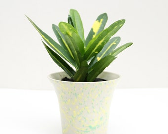 green and yellow planter, vase, pot, medium, ceramic, stoneware, pottery, wheel thrown, glazed