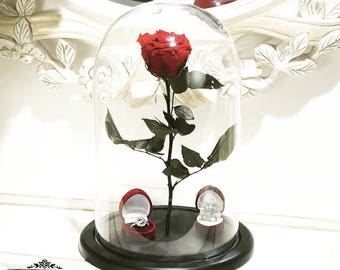 Red Belle Rose in glass,Disney,Beauty and the Beast rose,forever rose,gift for here,preserved roses,eternal rose enchanted,preserved flowers