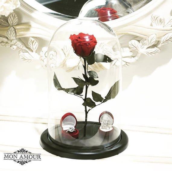 rouge belle rose en verre disney la beaut et la b te rose. Black Bedroom Furniture Sets. Home Design Ideas