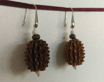Natural Earrings: seed of filao and wood