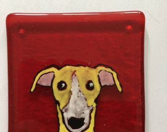Frank the Greyhound Fused glass coaster