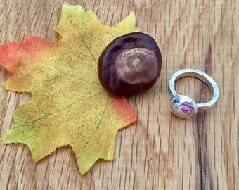 Silver Shell ring, Pure silver shell, Sea shell ring, shell ring, Sea shell jewellery, sea, shell, ring jewellery, silver, seashell, size 0