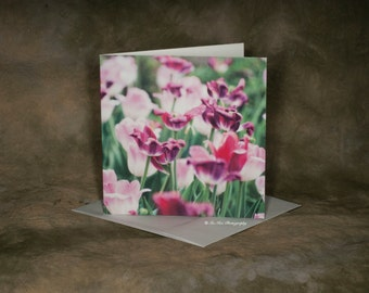 Blank Pink Flower Bed Cards