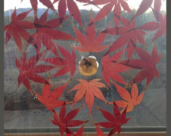 Red Maple Heart gorgeous bird window alert Easter Gift for Nature Lover Like Stained Glass Suncatcher