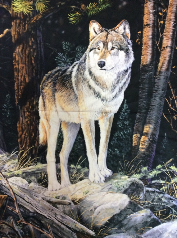 solitary sentinel wolf panel by northcott 36x45 fabric gray