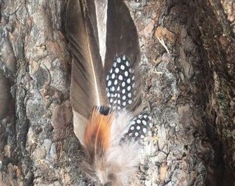 Smudge Fan Prayer Fan - small smudge fan with duck and pheasant feathers