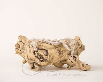 Driftwood Newborn Digital Backdrop, Neutral Digital Backdrop