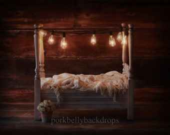 4 Post Bed, Edison Bulbs, Newborn Digital Backdrop