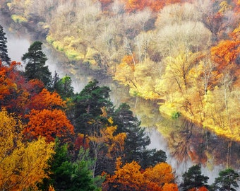 Autumn beauty of Ukrainian nature