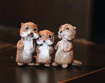 Otter's family
