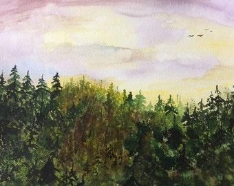 Sunset over dense forest.