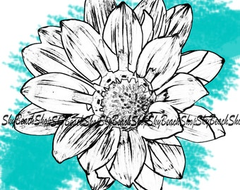 White with Black and Teal Daisy photograph, printed on canvas