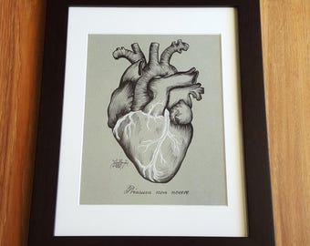 The Heart - Primum non nocere