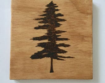 Sitka Tree Wood Nursery Decor - Pyrography Art, Wood Burned Art, Rustic Nature Wall Art, nature themed outdoor nursery, woodland art, baby