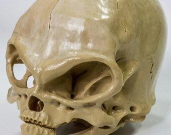 Alien skull N1