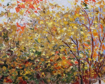 Warm Autumn Foliage