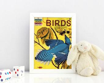 Birds Children's Science Book Cover Print - 1960