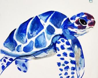 Blue-Blue Turtle Turtle