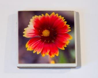 Garden Flower Ceramic Tile Magnets