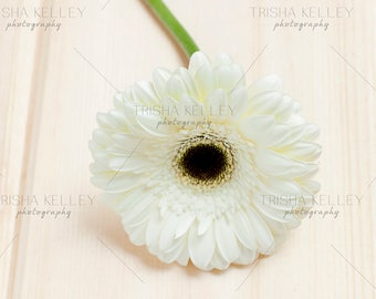 White Flower on Natural Wood