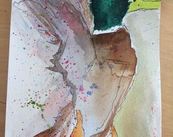 Mallard Duck Watercolour