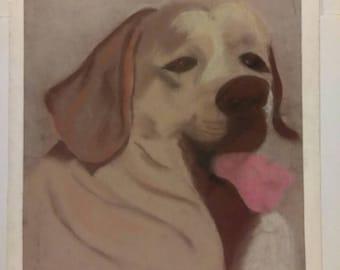 "Vintage ""Labrador"" Pastel art Drawing dog picture"