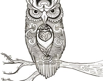 Owl by day