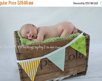 ENTIRE Store On SALE 7 Flags, Boy Fabric Bunting Banner, Photo Prop. Designer's Choice Boy Themed Flag Banner, Yellow, Green, Blue.