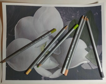Magnolia Coloring Page with Tutorial Digital Download
