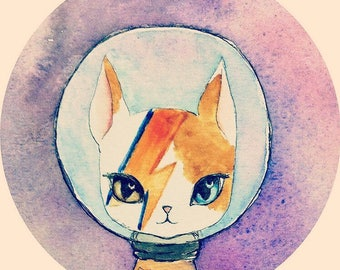 Ziggy Starcat original