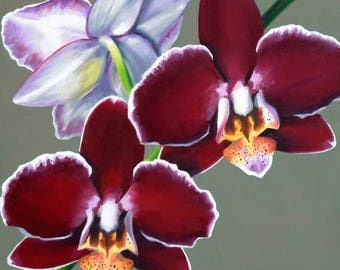 Three Orchids 8x8 original oil painting realistic floral by Nance Danforth