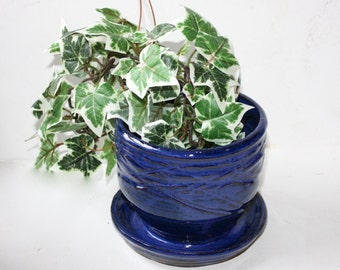 Blue Succulent  Planter Ceramic Stoneware also for  Houseplants or  Cactus with built in drainage tray