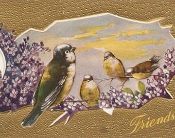 Birds, flowers antique postcard, Friendship Vintage Postcard, embossed bird postcard, violets
