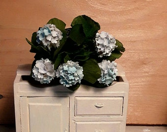Hydrangeas in miniature, five flowers in white and pale blue
