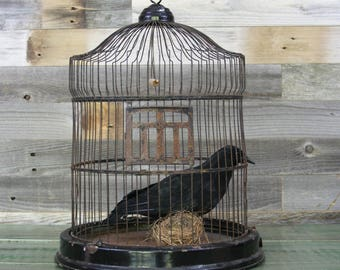 Antique BIRDCAGE Black Metal- Vintage Bird Cage- Vintage Cottage Chic Decor Hendryx Style with Bird and Nest- Black Metal